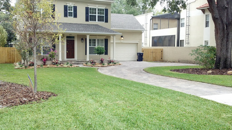 Lawn Care Advice for Newly Planted Grass -
