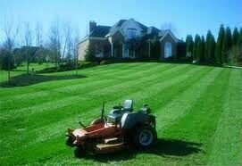 Rider mower in the large front yard of a Lakeland, FL homeowner.