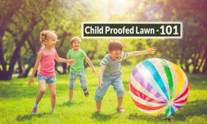 Kids Will Be Kids: How to Child Proof Your Lawn 101