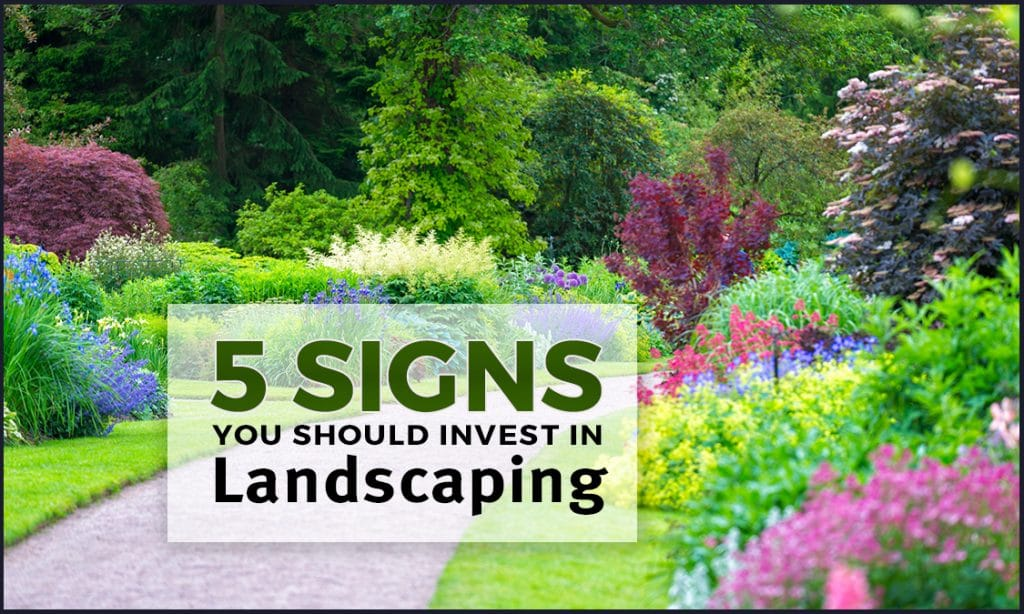 5 Signs You Should Invest In Landscaping