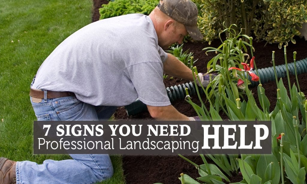 Landscape professional hard at work in a homeowner's back yard.