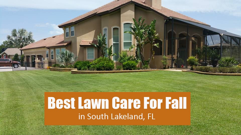 This homeowner's property in south Lakeland, FL is benefiting from full lawn care services provided by Creative Edge Landscape & Lawn Care LLC.