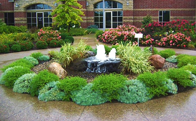 Well-shaped and maintained shrubs on commercial grounds in Lakeland.