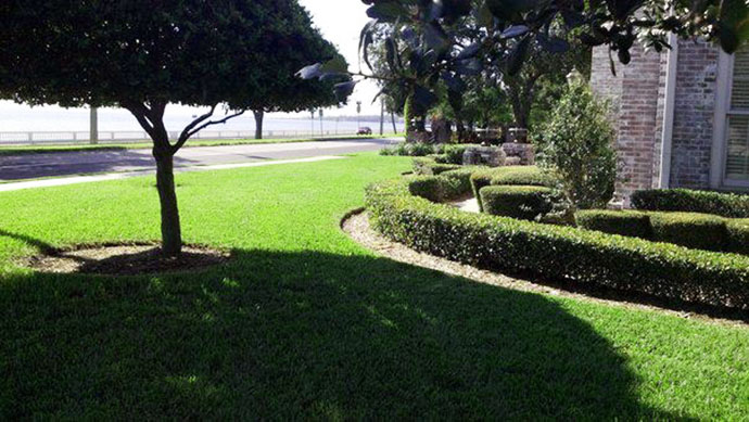Our lawn service is without peers in Lakeland, Auburndale, and Plant City Florida.