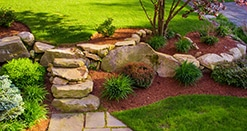 Landscape design featuring stone steps and ornamental shrubs.