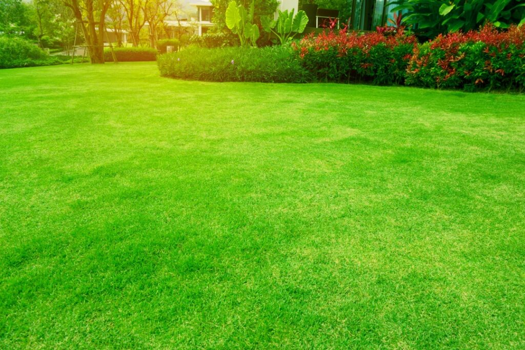 Landscaping contractor at a house in Lakeland, Florida