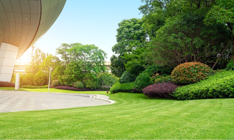 Commercial lawn care, lawn mowing and lawn maintenance company in Lakeland, Florida